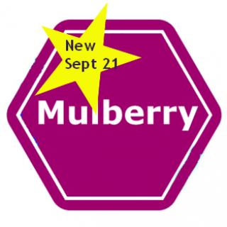 Mulberrynew